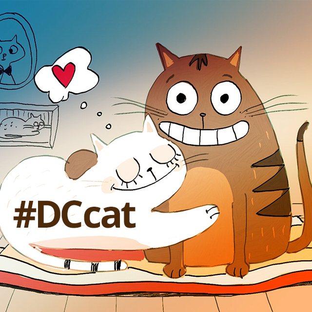 Draw The Purrfect Picture For Our Cat Drawing Challenge