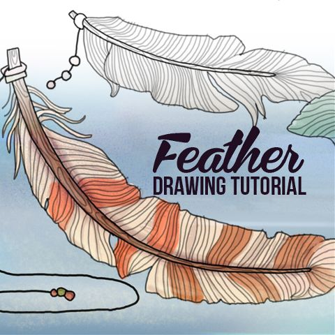 how to draw feathers step by step tutorial
