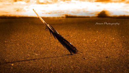 photography sunset macro beach cherai