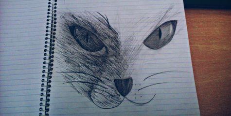 draw cat emotions love pencilart